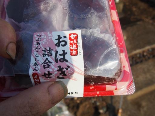 20160321・墓参りと桜ビミョー1
