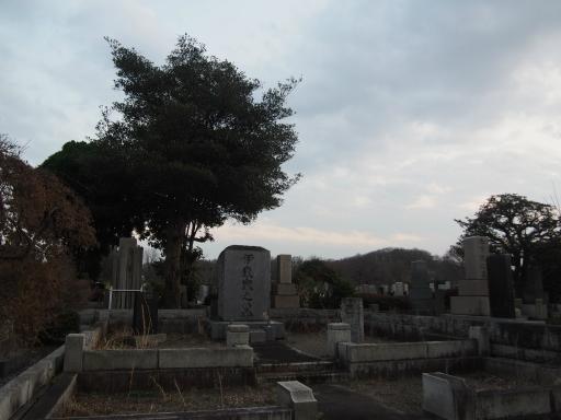 20160321・墓参りと桜ビミョー8