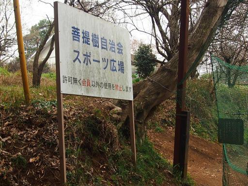 20160402・アルペンルート桜1-12