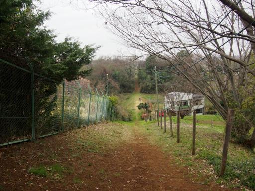 20160402・アルペンルート桜1-16