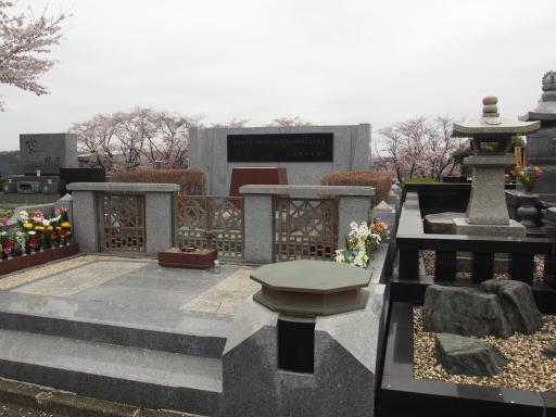 20160402・アルペンルート桜2-08