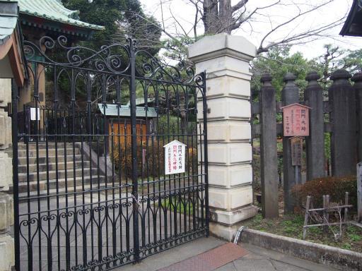 20160402・アルペンルート桜2-15