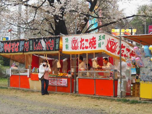20160402・アルペンルート桜2-24
