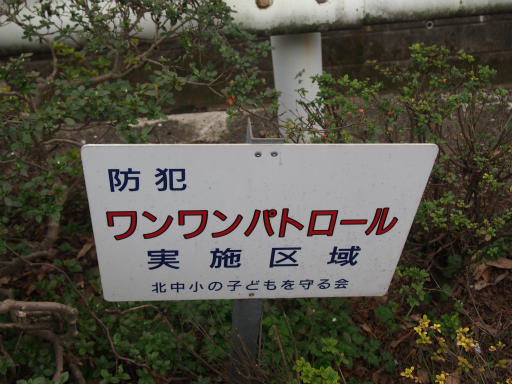 20160403・小手指東川の桜18