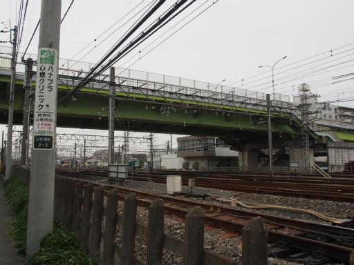 20160403・小手指東川の桜13
