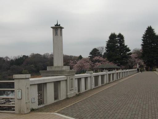 20160402・アルペンルート桜・空15