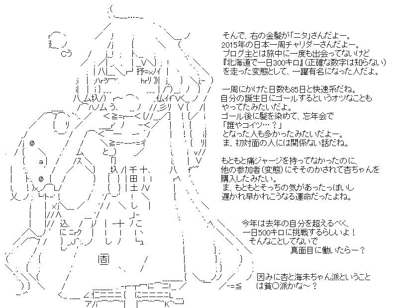 aa_biwaichi_07.jpg