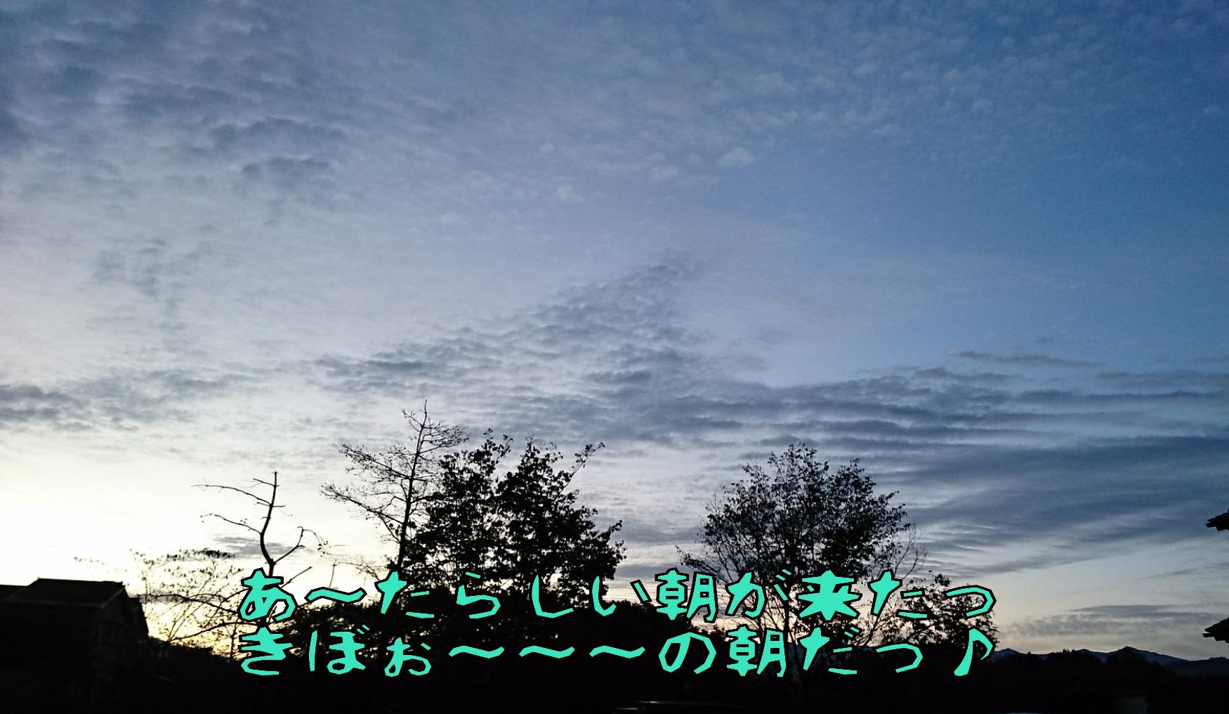 20151108094708720.jpg
