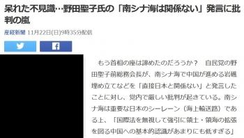 news呆れた不見識…野田聖子氏の「南シナ海は関係ない」発言に批判の嵐