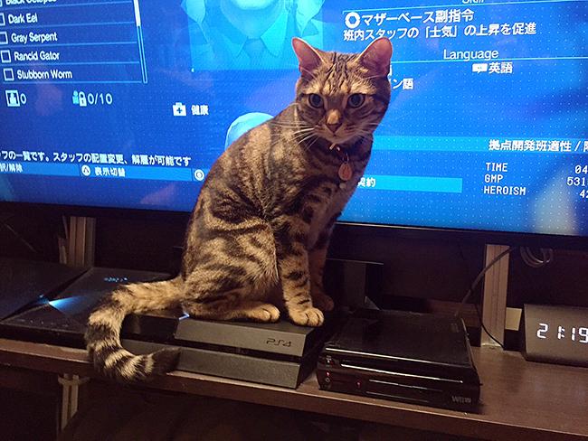 blog_000006472.jpg