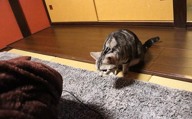 blog_000006481.jpg