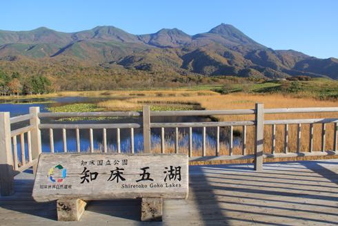 知床五湖2015-8