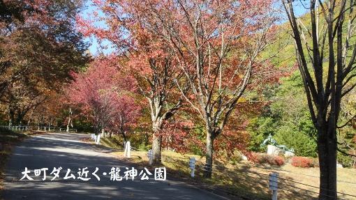10月16日大町ダムまでの紅葉バイクラン (2) (510x287)