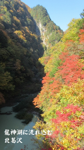 10月16日大町ダムまでの紅葉バイクラン (4) (287x510)