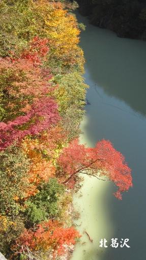 10月16日大町ダムまでの紅葉バイクラン (6) (287x510)