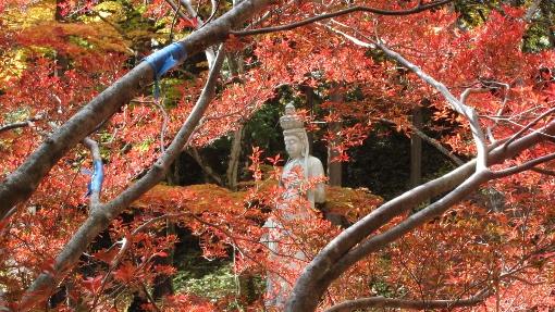 10月31日大町霊松寺 (10) (510x287)