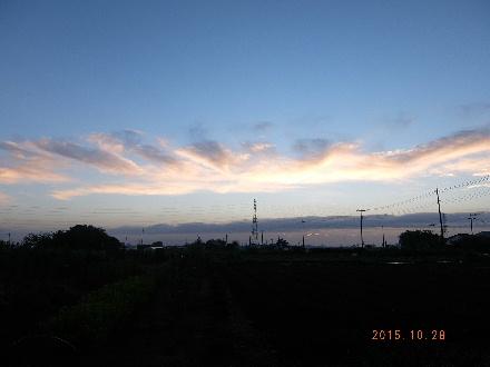 2015_10280012.jpg
