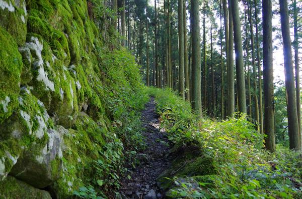 本仁田山06