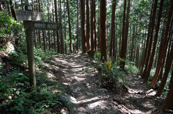 本仁田山34