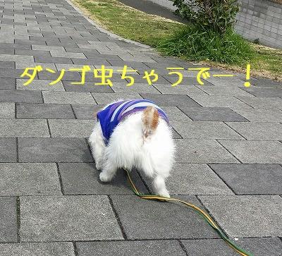 20160316_104847-1.jpg