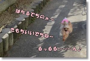 DSC_0940_20151025234109947.jpg
