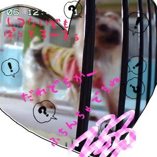 image1_20151106235511052.jpg
