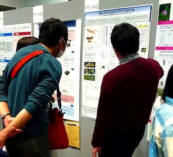 日本生態学会第63回大会2