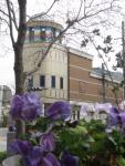 手塚治虫記念館とスミレ