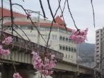 武庫川右岸から宝塚大劇場