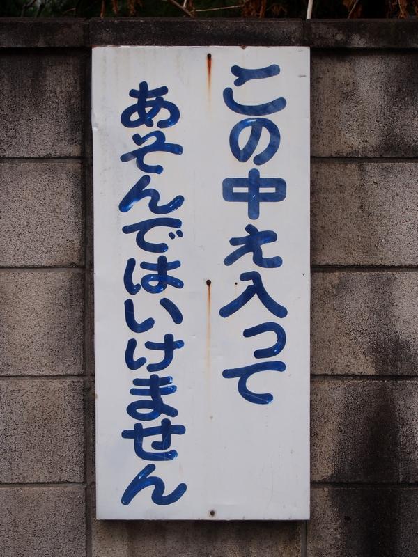 069_20160313093236cd9.jpg