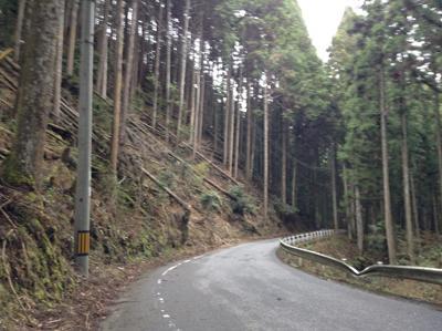 narayoshino
