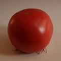 トマトサブロウ