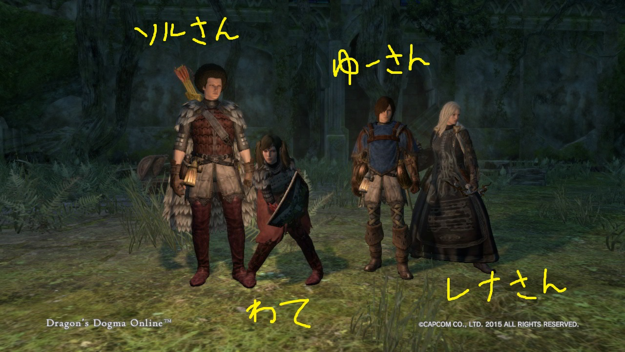 Dragons Dogma Online_40