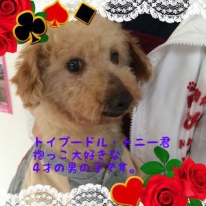 fc2blog_20160323183527000.jpg