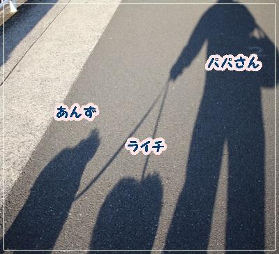 IMG_5610 (2)