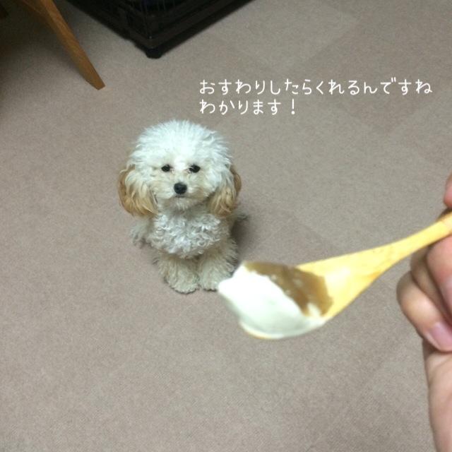 ハーゲンダッツ『ジャポネ <和栗あずき>』3