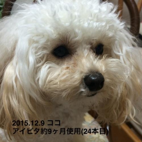 2015.12.9 ココ アイビタ開始9ヶ月24本目1