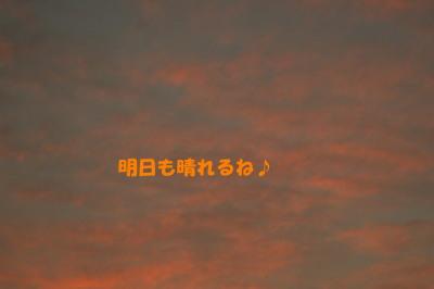 151028-6.jpg