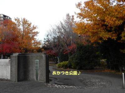 151208-5.jpg