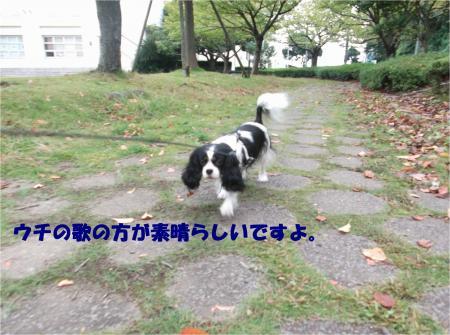 01_convert_20151013181142.jpg
