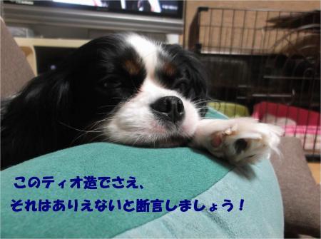 01_convert_20151110180738.jpg