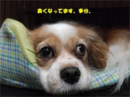 01_convert_20151117173049.jpg