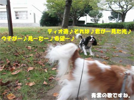 03_convert_20151013181208.jpg