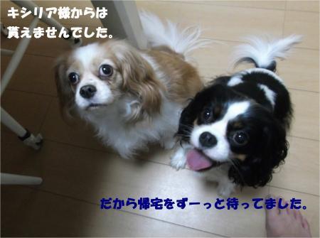 03_convert_20151022174536.jpg
