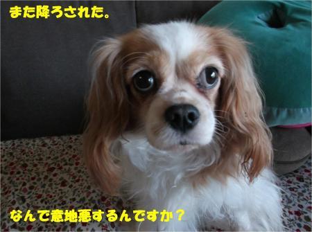 04_convert_20151015171227.jpg