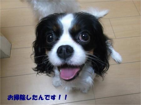 04_convert_20151125190330.jpg