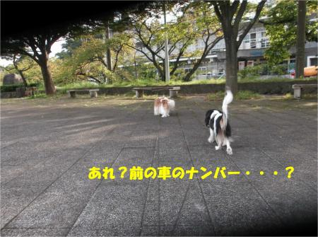 05_convert_20151013181230.jpg