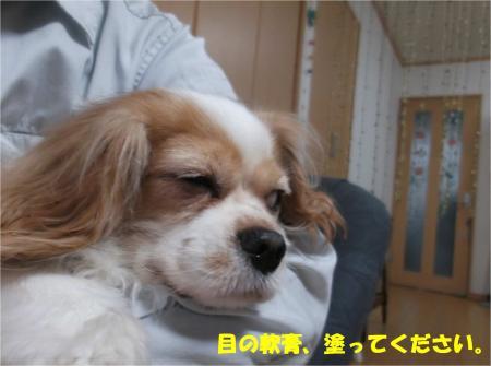 06_convert_20151110180836.jpg