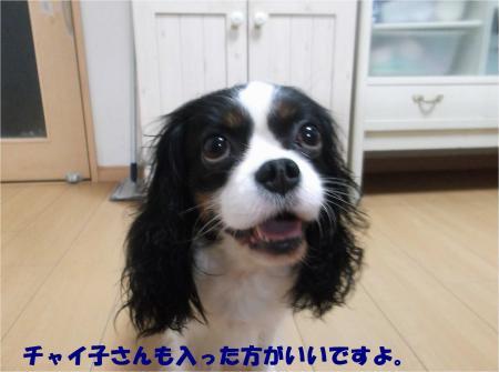 06_convert_20151112183421.jpg
