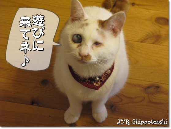 daichi_ivent4.JPG